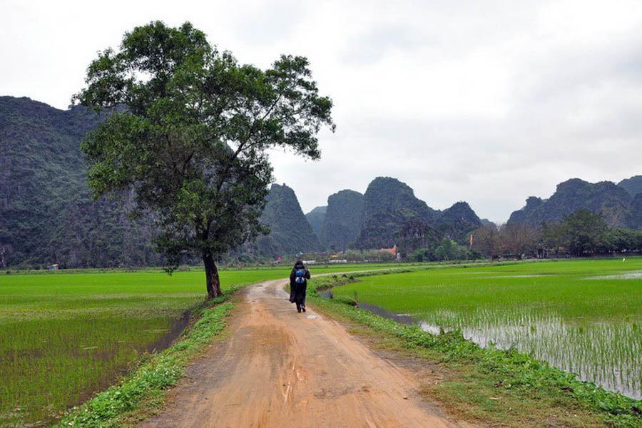 a-vietnam-hoa-lu-paysage-go