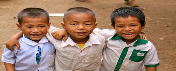 Un groupe d'heureux petits Birmans !
