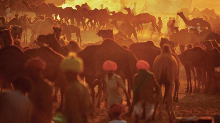 Foire de Pushkar Inde