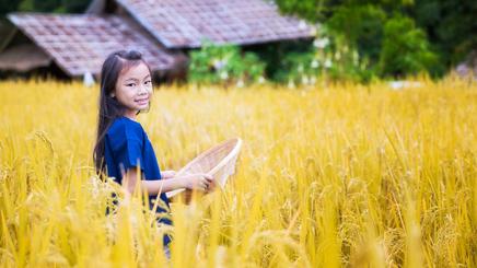 parc-historique-Phra-Nakhon