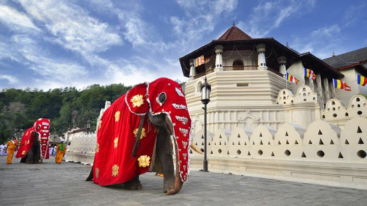 Kandy-temple-dent-Bouddha