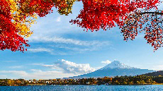 Vue sur le Mont Fuji et les momiji depuis le lac Kawaguchi