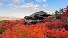 Kyoto-Momiji-Temple-Kiyomizudera