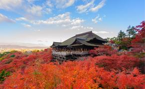 Momiji du temple Kiyomizudera à Kyoto
