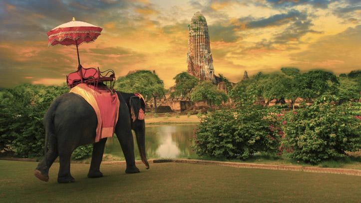 Thailande Ayutthaya Eleplant