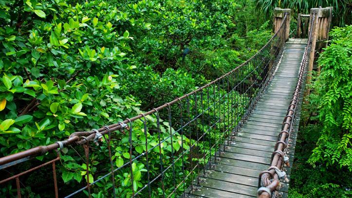 Randonnée en Thailande