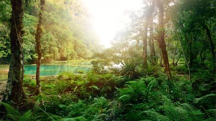 Riviere-Thailande
