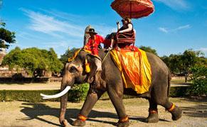Balade en éléphant, Thailande