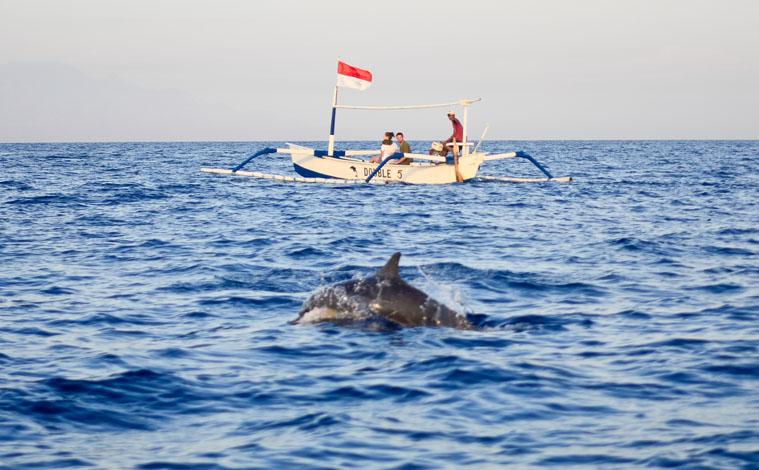 bali-indonesie-lovina-dauphins-mer