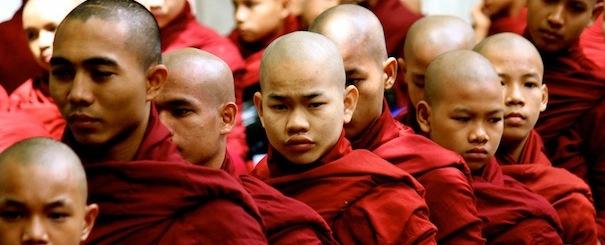 Moine Birmanie
