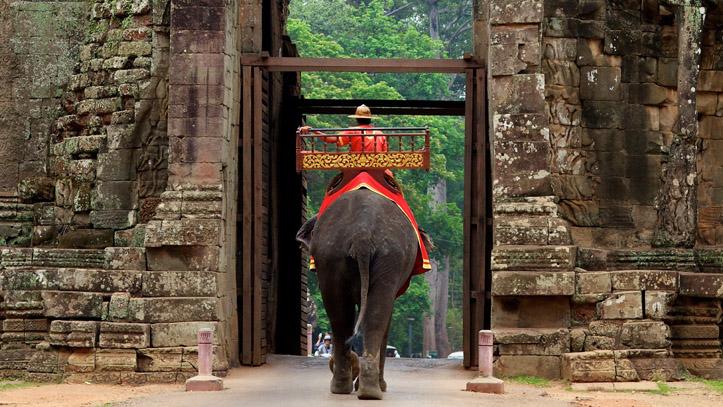 Entrée d'un éléphant par une des portes d'Angkor Thom, cité royale de l'Empire Khmer