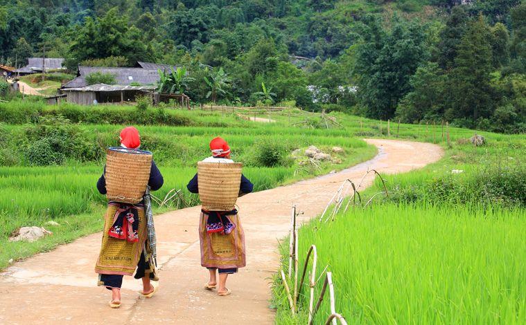 population-vietnam