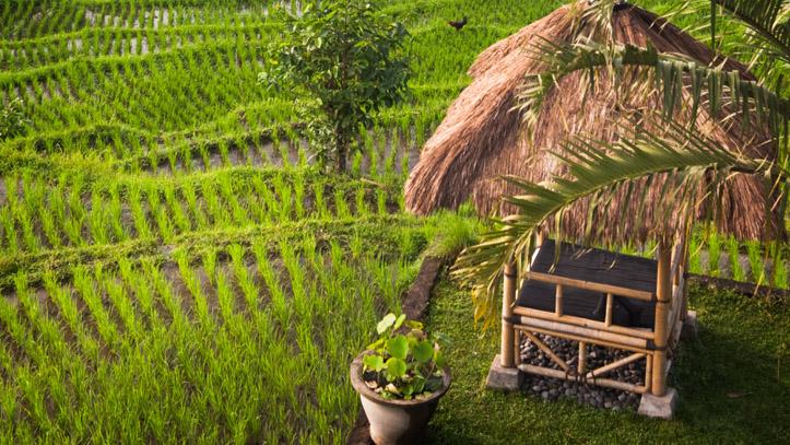 Indonesie bali sidemen vallée