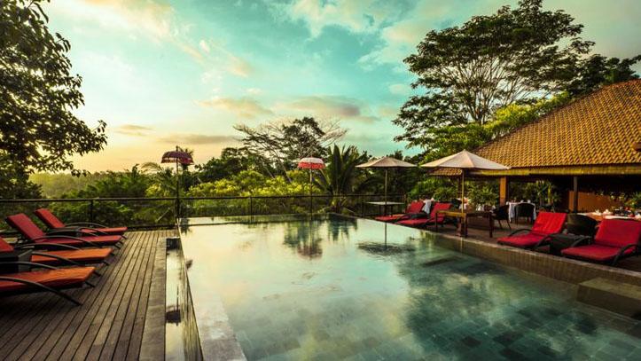 Jungle Retreat piscine liste