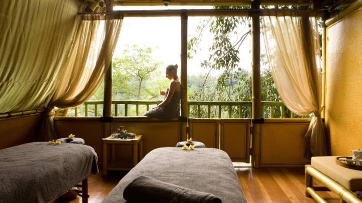 Jungle retreat spa vue