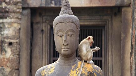 Lopburi-singe-statue-thailande