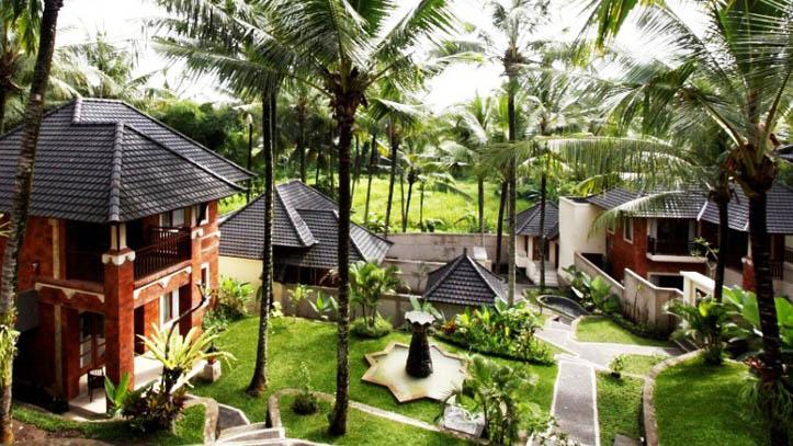 Rama Phala Jardin Verdoyant