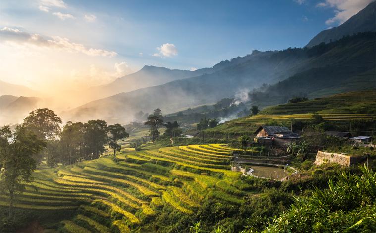 rizieres-lao-cai-vietnam