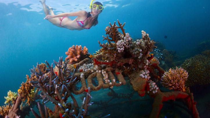 Snorkeling Indonésie Bali