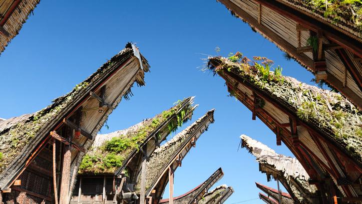 Tana Toraja Palawa village
