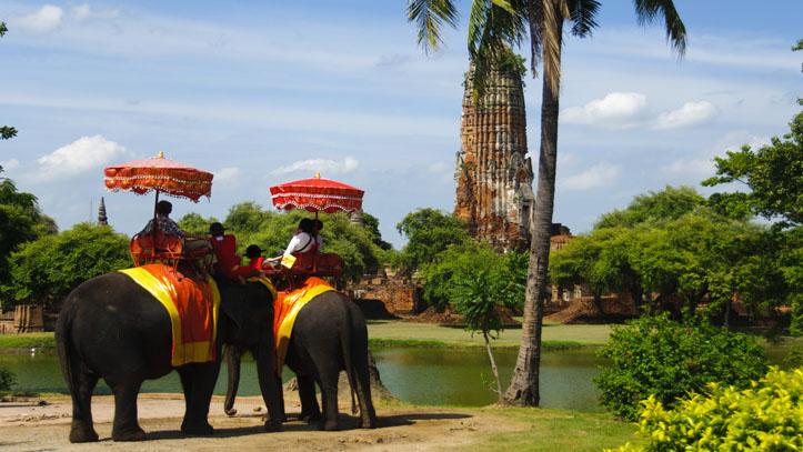 temples ayutthaya elephants