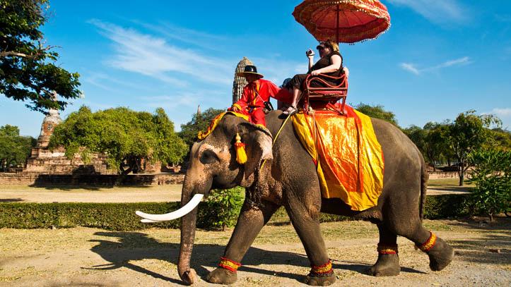 Ayutthaya, balade d'éléphants