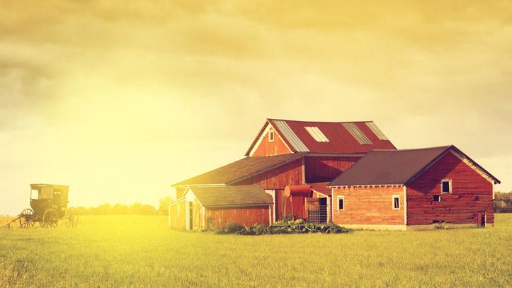 Pays Amish Ferme Calèche