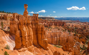 Usa Bryce Canyon Hoodoo's