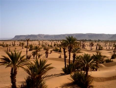 Pèlerinage Maroc