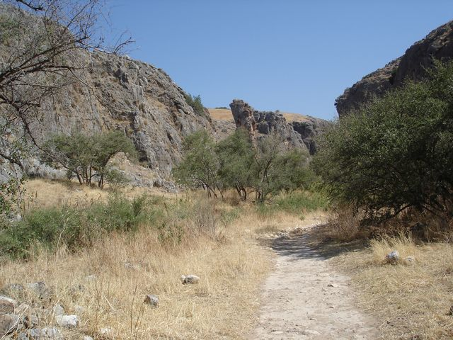 Trek en Galilée - Terre Sainte
