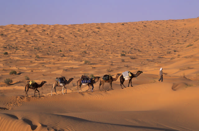 TREKKING_DESERT