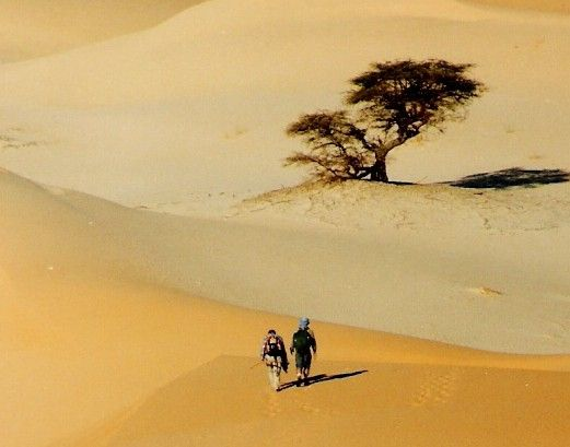 """L'image """"http://share.awp.advences.com/pack/imagespro/1951/mauritanie%20randonnee%20trekking%20desert%20nicollet.jpg"""" ne peut être affichée car elle contient des erreurs."""