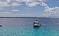 Promotion séjour plongée à Bonaire au Buddy Dive Resort