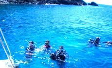 Visuel Apprendre à plonger en Guadeloupe : formation PADI